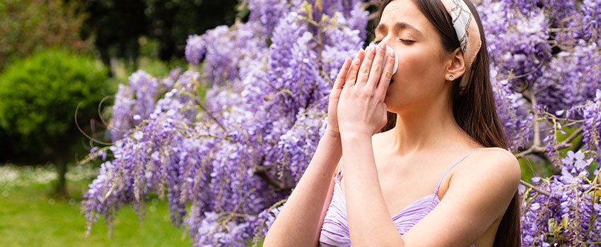 What Is the Best Way to Find Relief From Seasonal Allergies?
