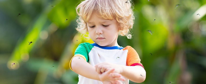 What Are Some Options for Natural Mosquito Repellent for Children?